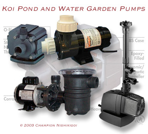 About Water Pumps | Champion Nishikigoi