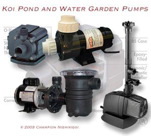 About Water Pumps | Champion Nishikigoi